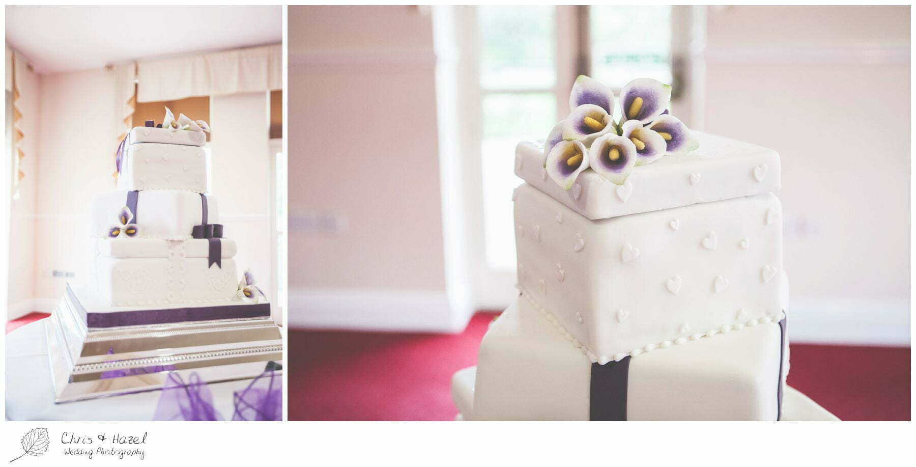 wedding cake, bagden hall wedding venue, documentary wedding photography, denny dale, huddersfield, Wedding Photographer, Bagden Hall, Wedding Photography, Chris and Hazel Wedding Photography, Alex tomenson, Vicky hunt